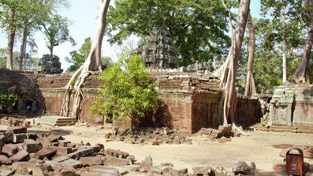 Cambodia, siem reap angkor wat temple ta prohm tree roots tomb raider hindu buddhist shrine Foto de archivo