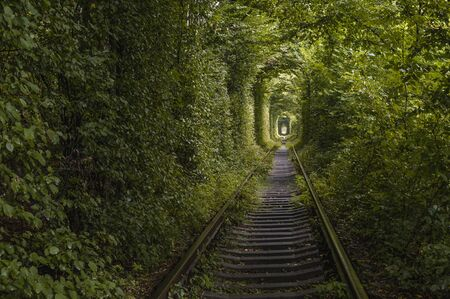 railway in tunnel of green leaves. romantic and mysterious tunnel of love in Ukraine. unexpected, unusual view