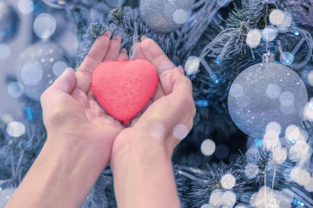 female hands hold heart on christmas tree. Blue christmas background