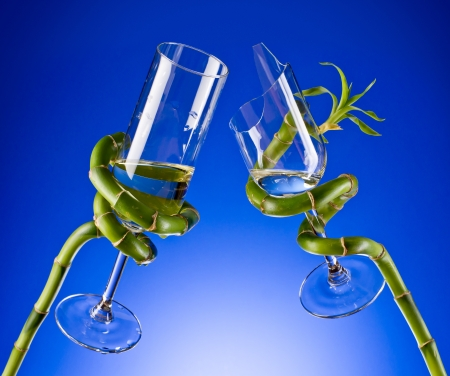a couple of glasses in the branches of a plant on a blue background photo