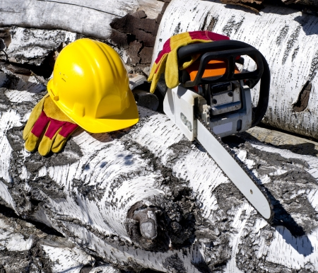 chainsaw and helmet on a background of trees felled