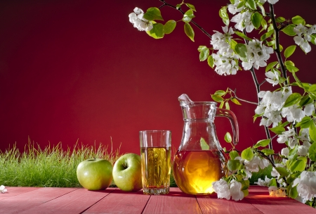 apple tree and apple juice and grass on a red background photo