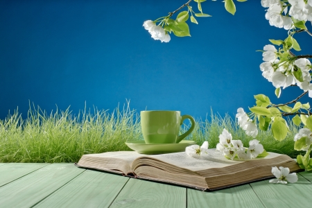 book and a cup on a background of nature Stock Photo