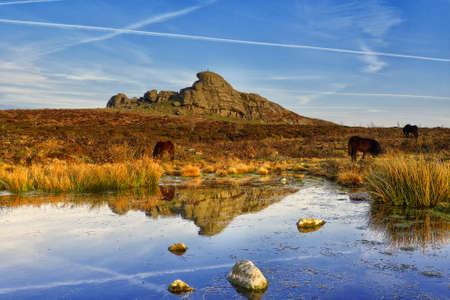devon: Haytor, Dartmoor National Park, Devon, UK