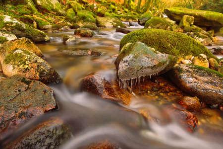 강 다트, 다트 국립 공원, 데 본, 영국
