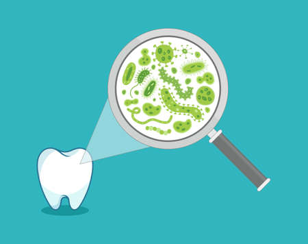 Green bacteria on a white tooth being viewed on a magnifying glass - vector illustration