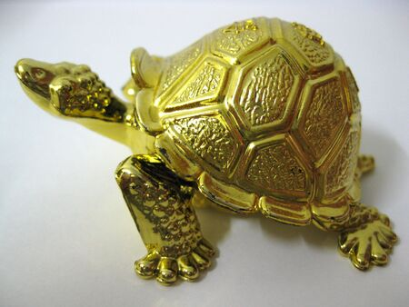 Gold Turtle in Feng Shui it means brings wealth and great good fortune photo