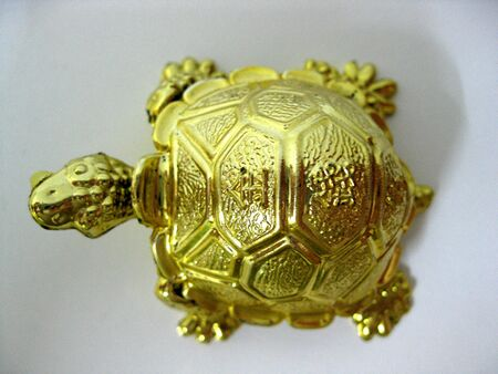 Gold Turtle in Feng Shui it means brings wealth and great good fortune Stock Photo