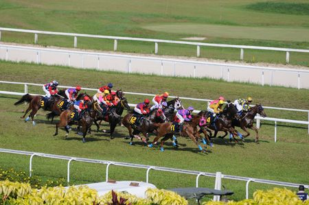 Sport on Horse Racing Competition Stock Photo