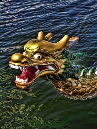 The Head of DragonBoat