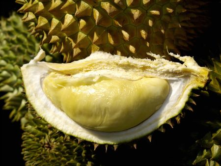 Malaysia Durian Stock Photo - 7145366
