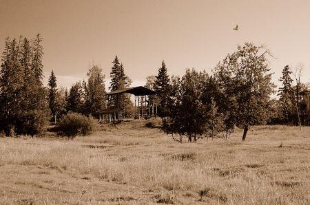Hay shed Фото со стока