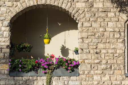 The yellow flowerpot with the sparrows in the sun Stockfoto