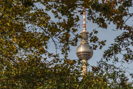 Berlin television tower in autumn with yellow leaves in the foreground 写真素材