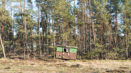 A construction trailer stands on the edge of a forest 写真素材