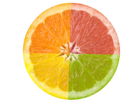 This is a composite shot of four different citrus fruit. photo