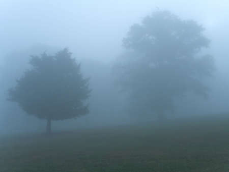 This is a misty early morning shot taken at Monmouth Battlefield State Park in NJ. Stock Photo - 385131