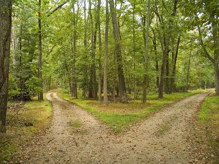 Dit is een opname van twee wandelroutes op Allaire State Park in New Jersey.
