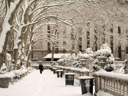 Dieses ist ein Schuß des Bryant Parks in Manhattan während eines Schneesturms.