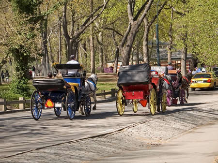 horse drawn: A couple of horse drawn carriages taking tourists for a ride in Central Park.