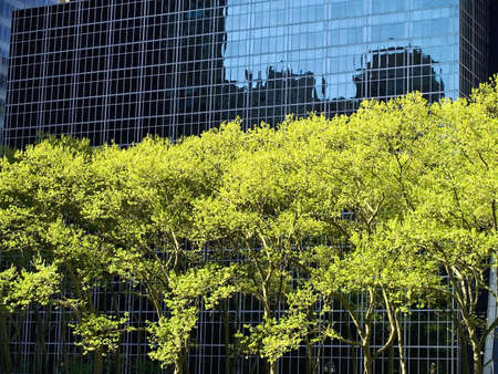 bryant park: The contrast of bright green trees and the design of a modern building near Bryant park in New York City.
