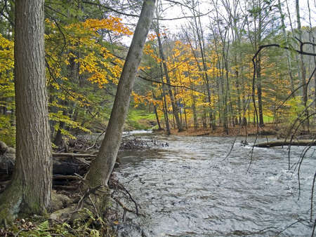A stream winds through the Autumn woods of the Pocono Mountains in Pennsylvania. Stock Photo - 2104897