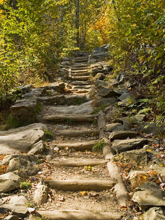 at ease: A hiking trail with log steps to ease the climb in Shenandoah National Park in West Virginia.