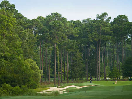 Golfers on a beautiful  golf course in Myrtle Beach, South Carolina. Stock Photo