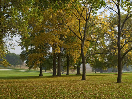 forge: An Autumn scene in Valley Forge National Historical Park in Pennsylvania.