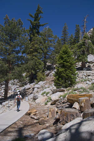 A hiker on the trail in San Jacinto State Park near Palm Springs, California. Stock Photo - 5148697