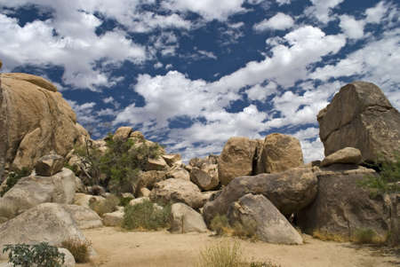 Huge boulders in the desert and and this cloudy blue sky make for an interesting landscape in Joshua Tree National Park.