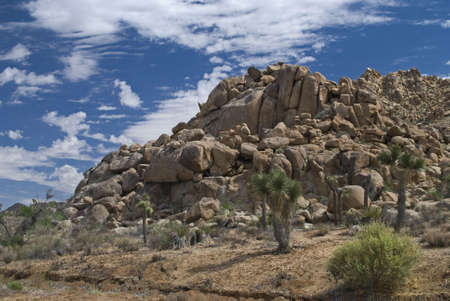 Huge boulders in the desert form hills and and create an interesting landscape in Joshua Tree National Park.