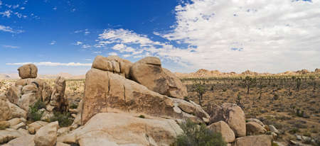 A panoramic view of Joshua Tree National Park showing the interesting rock formations on the landscape. photo