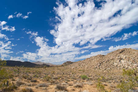 A barren rock filled landscape and blue sky with clouds are common in Joshua Tree National Park near Palm Springs, California. photo