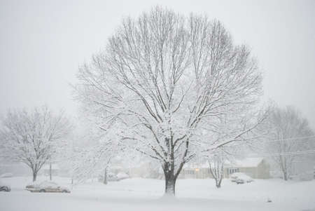 A Winter scene of a neighborhood covered in freshly fallen snow. Stock Photo