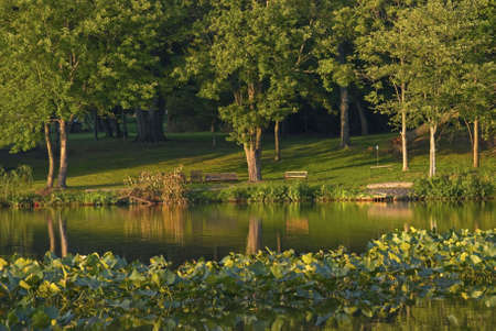 middlesex: A late Summer afternoon on Manalapan Lake in Thompson Park, Monroe Township in Middlesex County New Jersey. Stock Photo