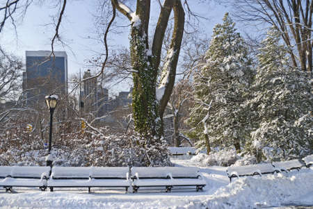 Freshly fallen snow in Central Park in Manhattan with buildings in the background. photo