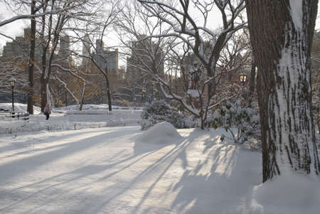 A Winter snow scene in Central Park in Manhattan. photo