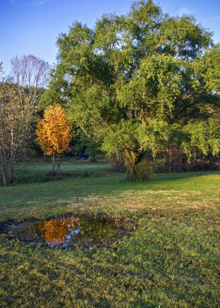 middlesex:  A scenic view of Davidsons Mill Pond Park in Middlesex County, NJ. Stock Photo