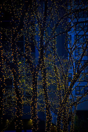 A Christmas lights background photo at night taken in New York City.