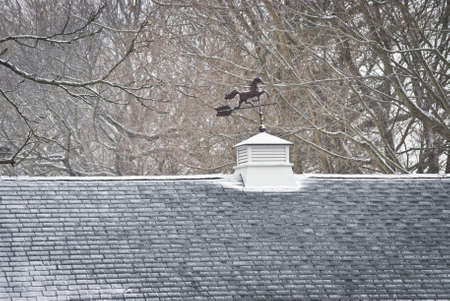 A weathervane on the roof of a home during a light snowfall.