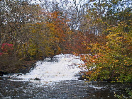 A full running stream passes through the Autumn woods in the Pocono Mountains of Pennsylvania. photo
