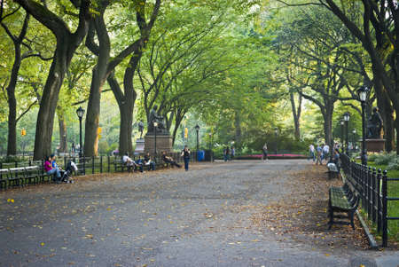 elm: NEW YORK - SEPTEMBER 24: A beautiful Late Summer day on the Mall in Central Park, famous for the canopy of the American elm trees on September 24, 2010.