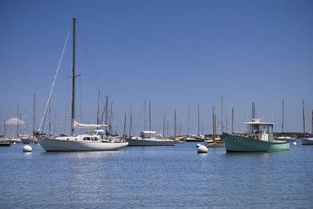 martha: Sailboats on a sunny Summer day off Martha s Vineyard on Cape Cod in Massachusetts