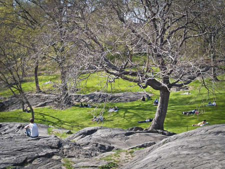 People relaxing in Central Park on the rocks and the lawn during early Spring.