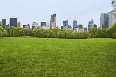 central park: The huge lawn of Sheep Meadow in Central Park on a quiet Spring Day in Manhattan  Stock Photo
