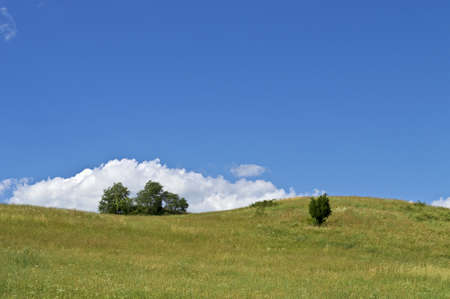 A green hillside on a beautiful Summer day in Sussex County, New Jersey. photo