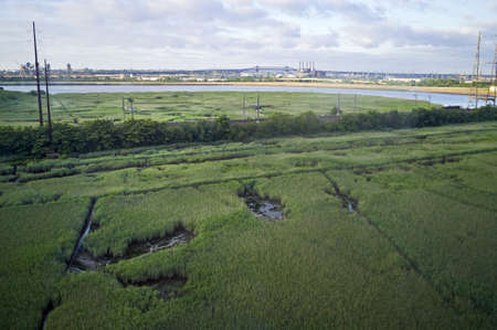 skyway: A view of the New Jersey wetlands with the Pulaski Skyway in the background near the NJ Turnpike  Stock Photo