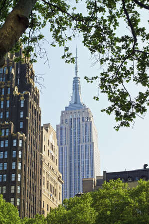 bryant park: The Empire State Building framed b a sycamore tree in Bryant Park in Manhattan. Editorial
