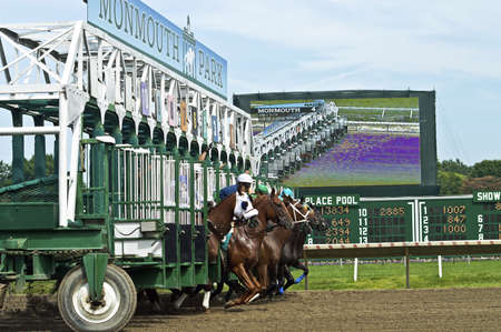 race start: The starting gate at Monmouth Park in New Jersey